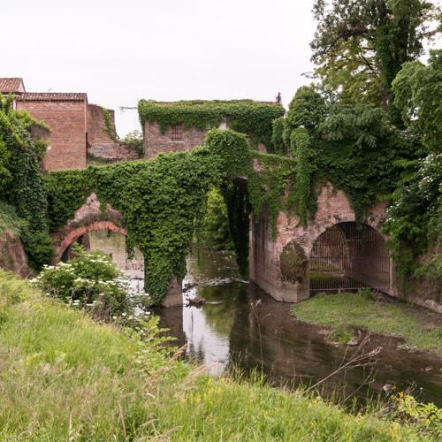 Visita Guidata – Solidaria – Navigare la storia: lungo il Piovego fino alla Golena San Massimo