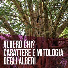Albero chi? Carattere e mitologia degli alberi