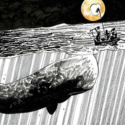 I Martedì di via Belzoni – Una balena bianca tra le righe
